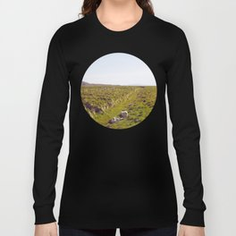 Sheeps in Iceland Long Sleeve T-shirt
