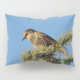 O My Starling, Clementine! Pillow Sham