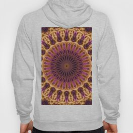 Pretty golden and pink mandala Hoody