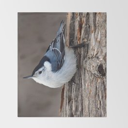 Upside Down Nuthatch Throw Blanket