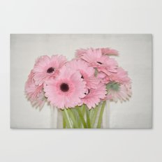 Pink Gerbera Flowers Canvas Print