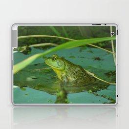 Frog Photography Print Laptop & iPad Skin