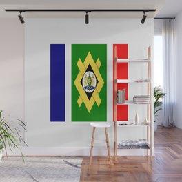 flag of Johannesburg Wall Mural
