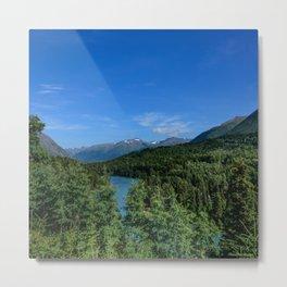 Cooper_Landing 4158, Kenai Peninsula, Alaska Metal Print