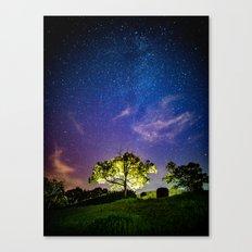 Galaxy Dreams of an Earthling Canvas Print