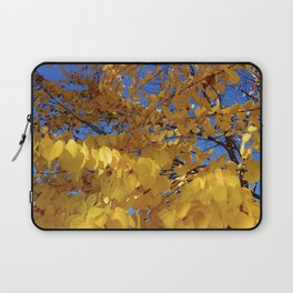 Fall Colors Laptop Sleeve