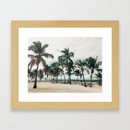 Palms on the Beach Framed Art Print