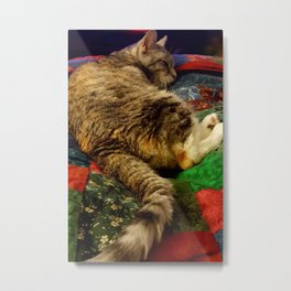 This is the life! Metal Print