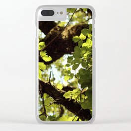Filtered Canopy Clear iPhone Case