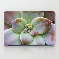 succulent iPad Cases featuring Succulent by Lindsay Faye