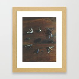 Bugs part 2 Framed Art Print