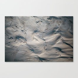 BANKS Canvas Print