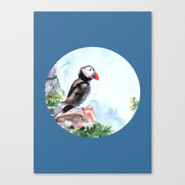 Puffin sitting on a rock with a blue background Canvas Print