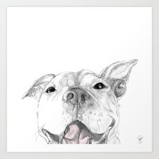 Whaddup :: A Pit Bull Smile Art Print