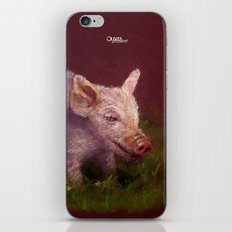 { Pig } iPhone & iPod Skin