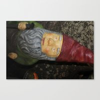 gnome Canvas Prints featuring Gnome by alexarayy