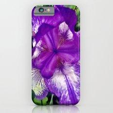 Purple in Bloom iPhone 6s Slim Case