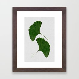 Ginkgo Leaf II Framed Art Print