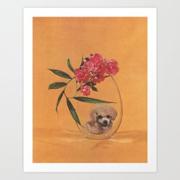 I Can't See Any Reason To Complain Art Print