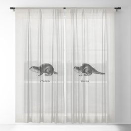 Hermione's Otter Sheer Curtain