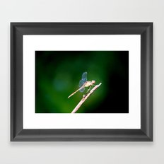 Invisible Wings Framed Art Print