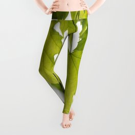 The Green Leaves of Summer Leggings