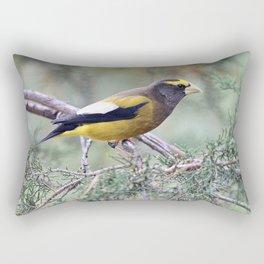 Poised: Evening Grosbeak Rectangular Pillow