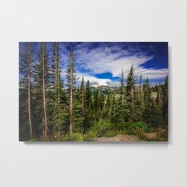 Mt Rainier National Park Metal Print