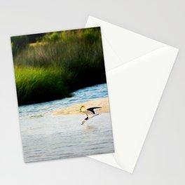 Black Skimmer Stationery Cards