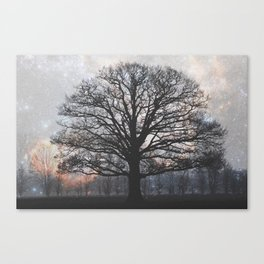 lonely tree in the fantasy land Canvas Print