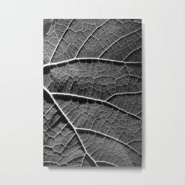 Leaf in black and white Metal Print