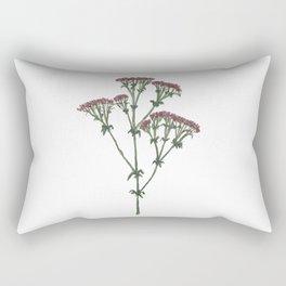 Pink Achillea Rectangular Pillow