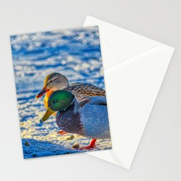 Winter Love Stationery Cards