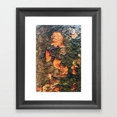 Treetrunks Framed Art Print