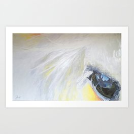 Horseeye Art Print