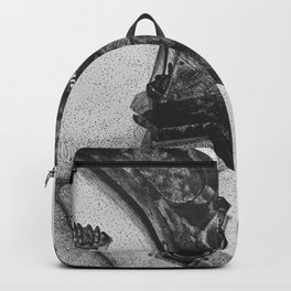 a few loose screws Backpack