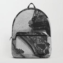 a few loose screws Backpack