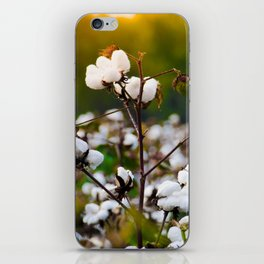 Cotton Field iPhone Skin