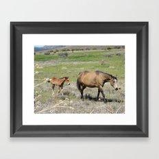 Horses Framed Art Print