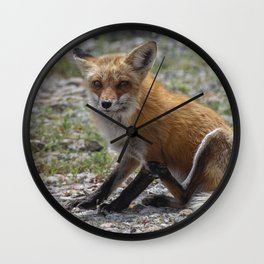 Itchy Fox Wall Clock