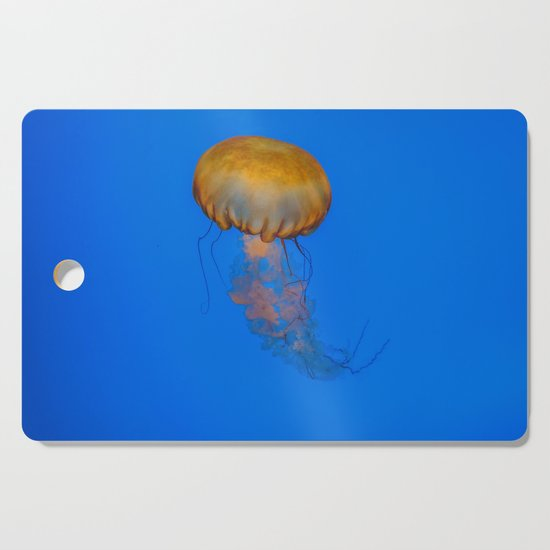 Jelly by alextonettiphotography