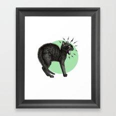 Night time cat Framed Art Print