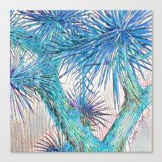 Joshua Tree VGBlue by CREYES Canvas Print