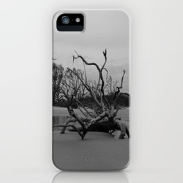 Ghost Trees - Driftwood Beach iPhone Case