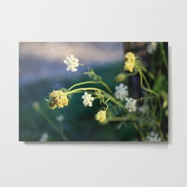 Beautiful Weeds Metal Print
