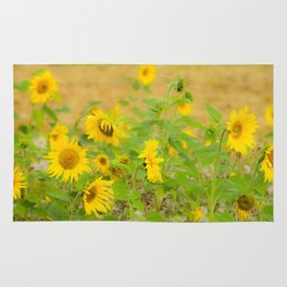 autumn flowers Rug