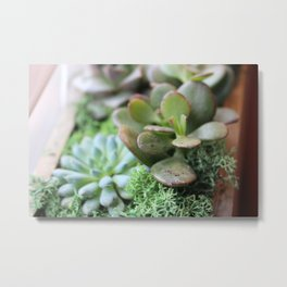 This Doesn't Succ Metal Print