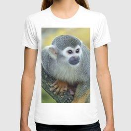 Monkey 004 T-shirt