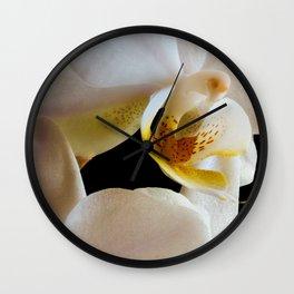inside an orchid Wall Clock