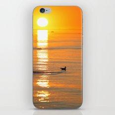 seagull at sundown iPhone & iPod Skin